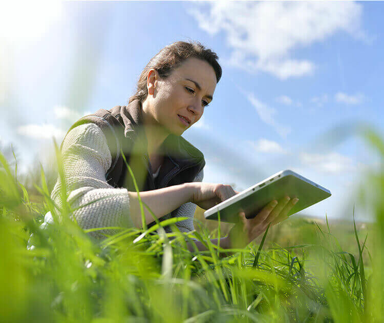 Woman in field looking at a laptop